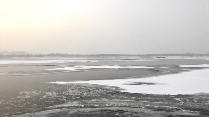 The mostly frozen Hun River as seen from my spotting location. The black dots near the far shore are hundreds of ducks.